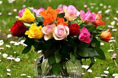 Vágott rózsa fajták